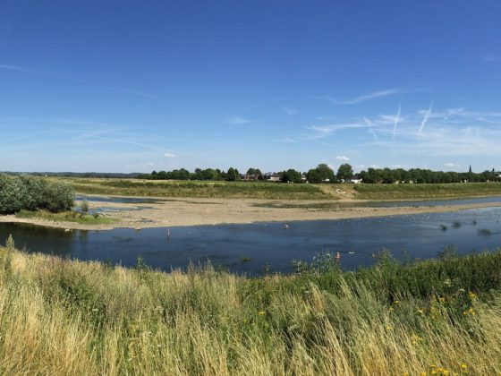 Natuurgebied Maas
