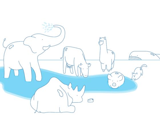 Water Animals Bernhard Lenger - illustratie Mariska Lamiaud